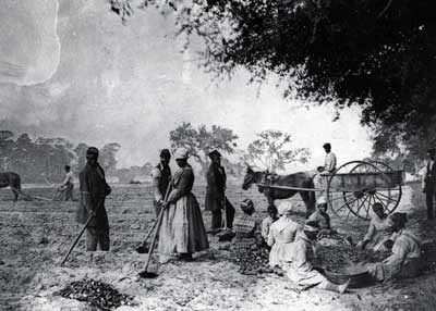 Plantation slaves of the Old South