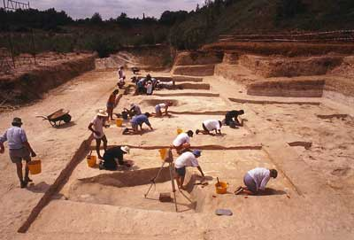 Boxgrove  excavation