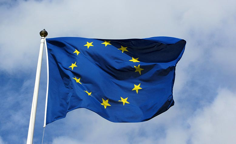 European Union flag. Photo: Gizmodo