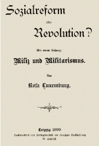 reform-or-revolution-lg.jpg