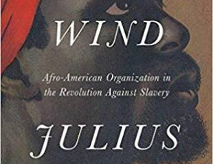 The Common Wind charts the black resistance movement that won - book review