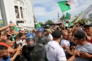 Algeria revolts: what are the next steps?