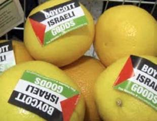 Palestine solidarity: boycotting Israel and anti-Semitism