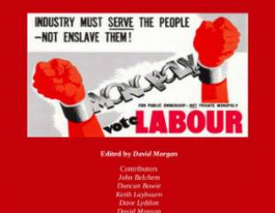 The Labour Party in Historical Perspective - book review