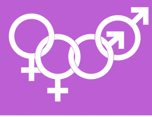 Trans rights, women's rights and open debate – weekly briefing