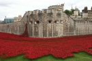 A hundred years after WW1, what are we remembering?